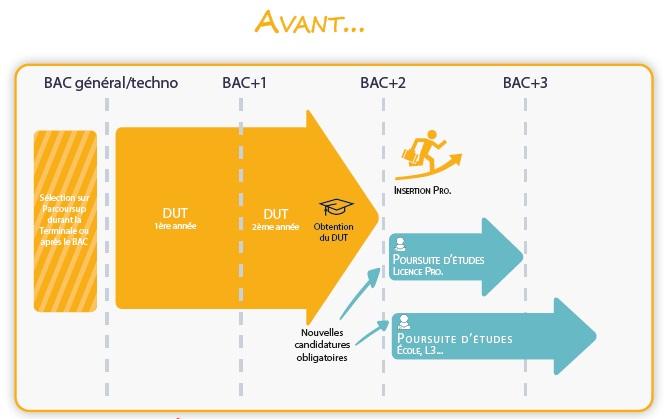 Infographie Bachelor - Avant