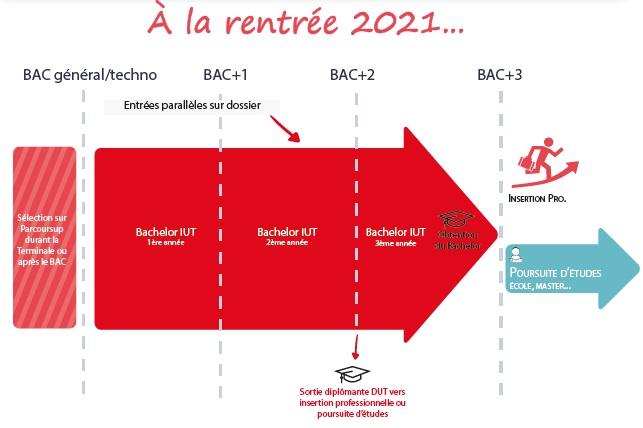 Infographie Bachelor - Après